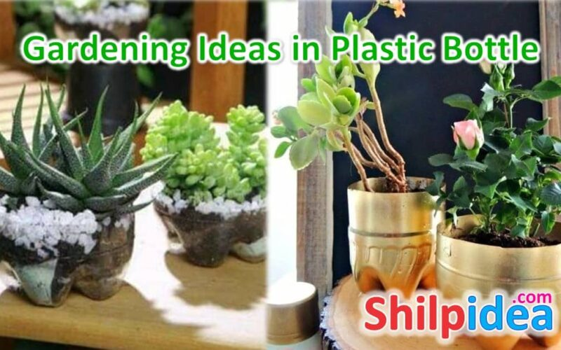 gardening-ideas-plastic-bottle-shilpidea